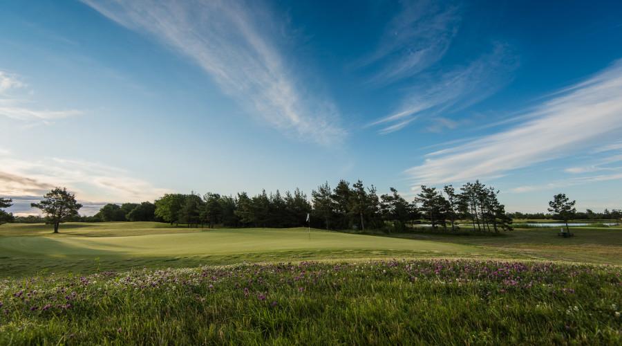 Saare Golf (1 of 4)