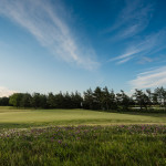 Saare Golf Review