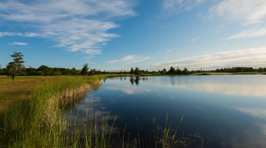 Saare Golf (3 of 4)
