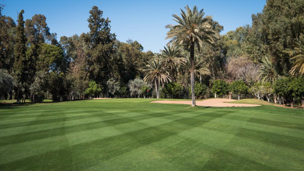 Royal Marrakech Golf Club.